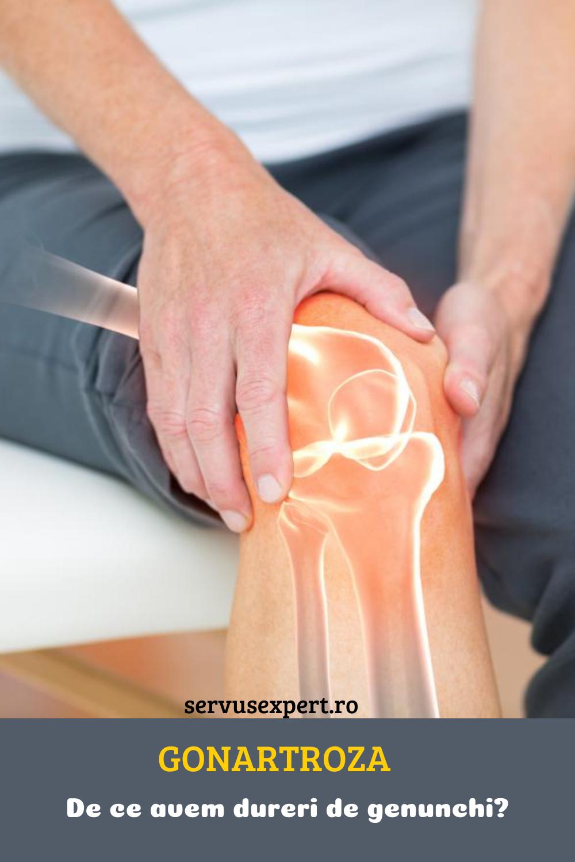 Tratamentul nutriției cu artroză