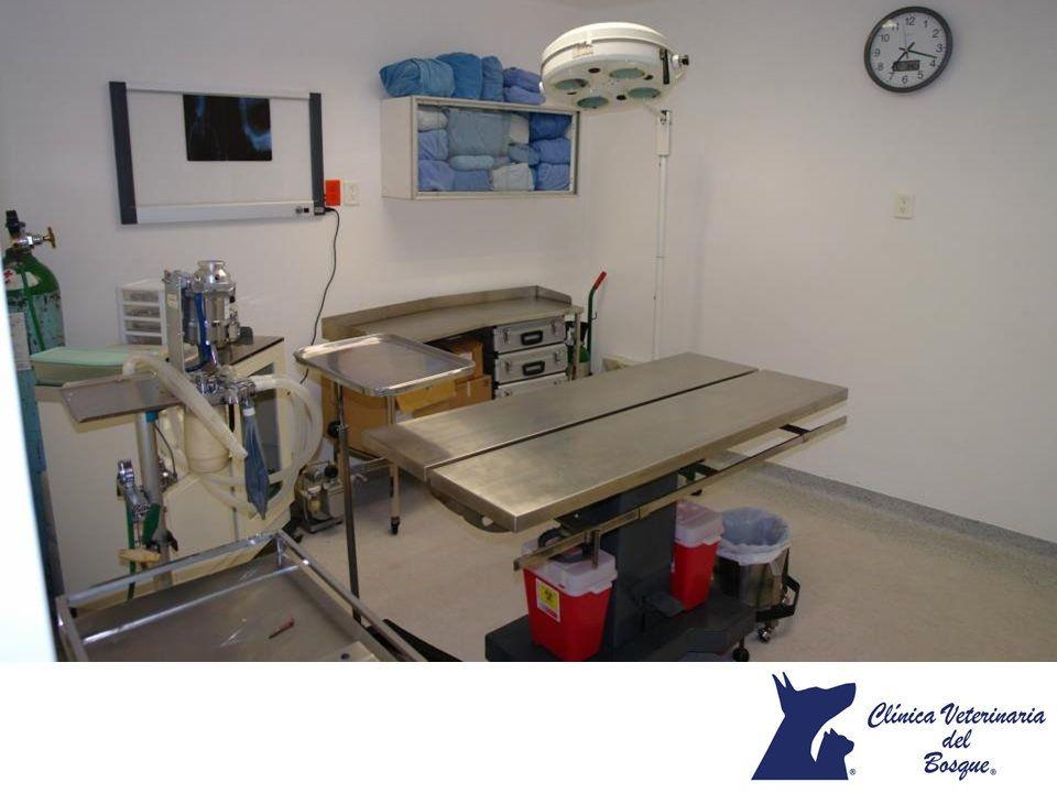 19++ Care animal hospital temecula ideas