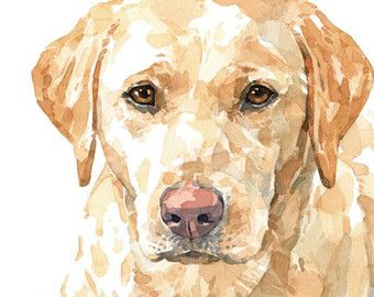 lab puppies watercolor limited edition print yellow and black labrador retriever