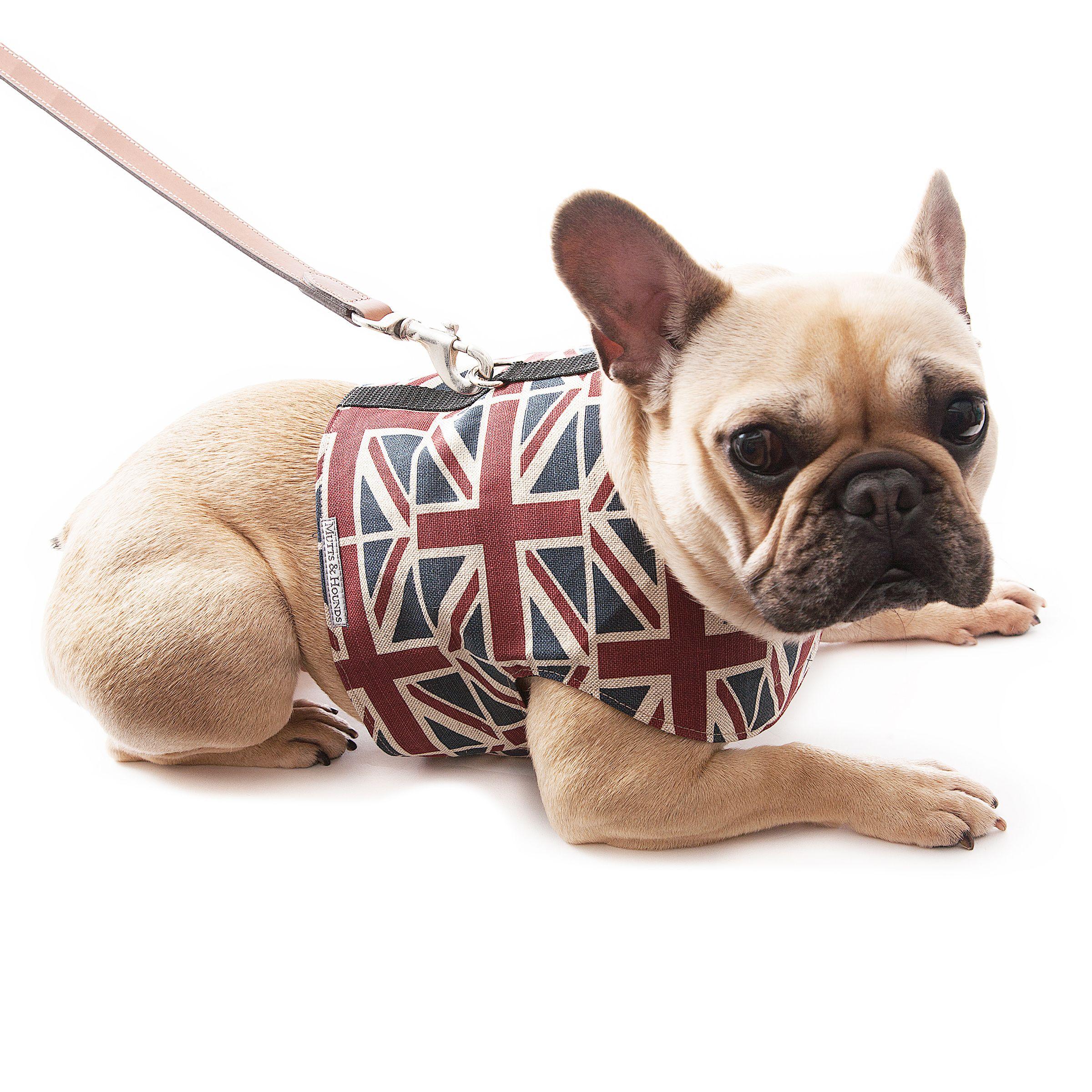 Union Jack Dog Harness Dog Harness French Bulldog Harness Dog