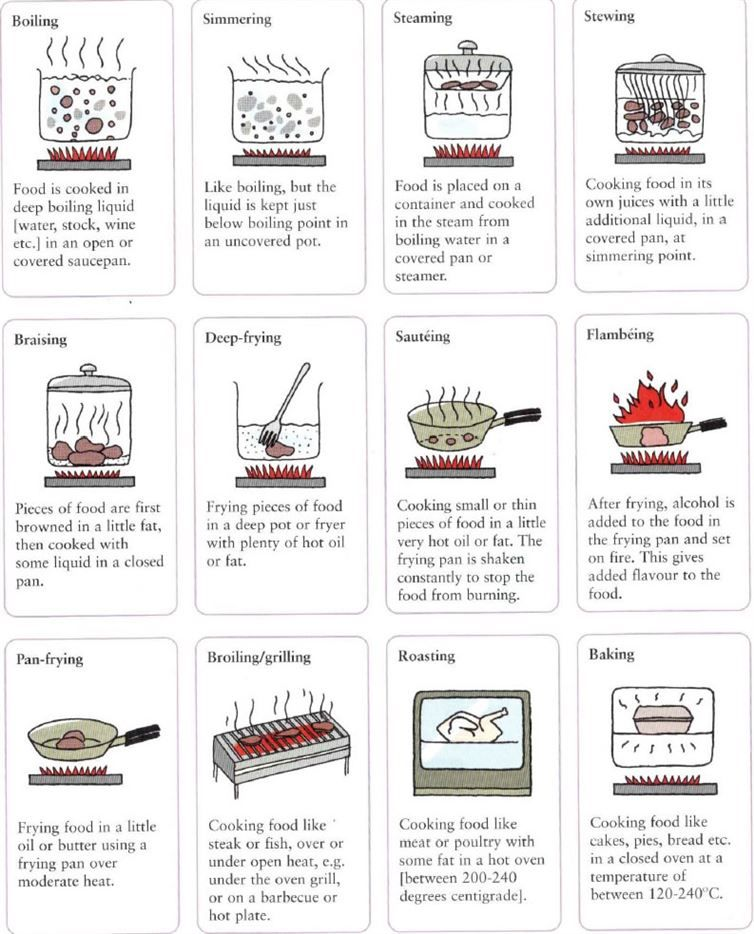 20 Kitchen Charts That Ll Bring Out Your Inner Chef Diply