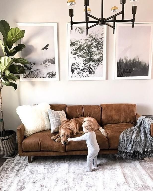 2293 Best Images About Leather Sofas And Living Room: Living Room Reveal With Article In 2020