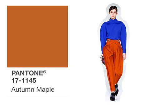 Trendfarben HerbstWinter 20192020: Rot, Orange, Blau & Co