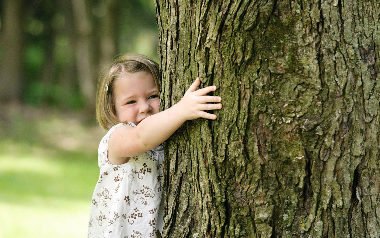 Have you hugged your trees today tree experts hug you