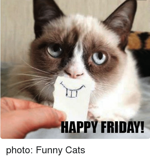 Image result for friday funny SchoolMorning Message