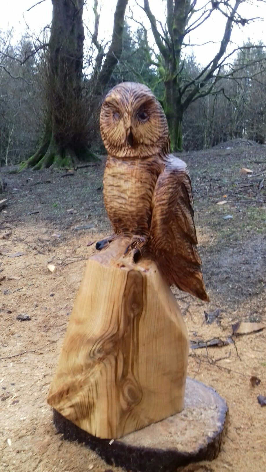 Wooden carving owl figurine decor chainsaw carving free photo
