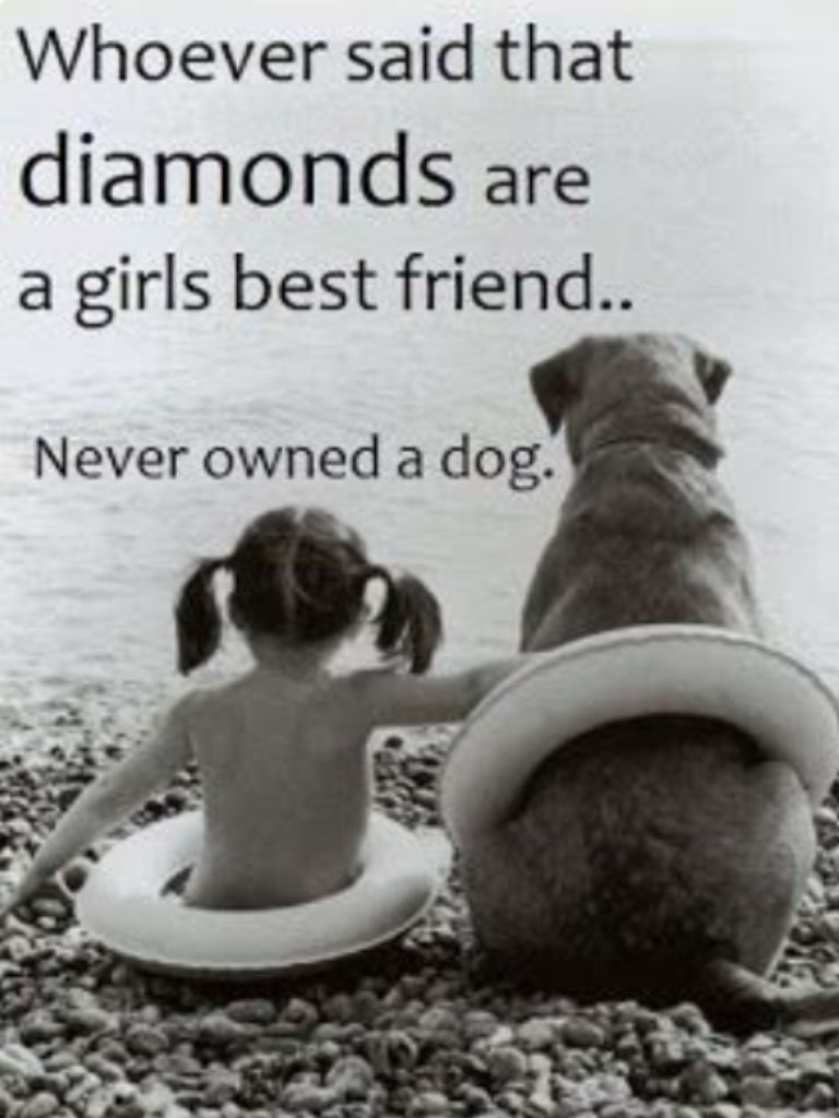 Quotes About A Girl And Her Dog Pinmarcus Biemans On Quotes  Pinterest