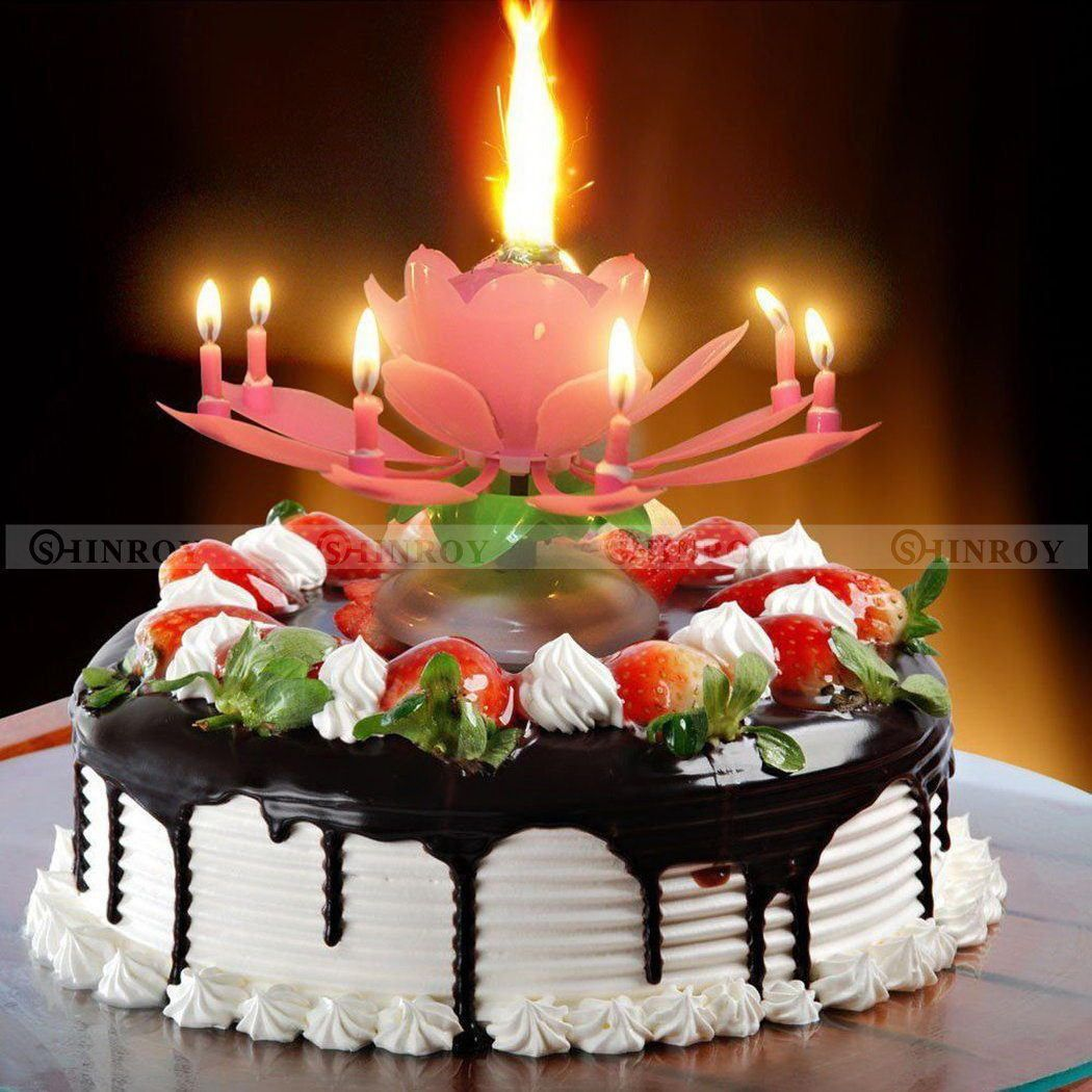 Birthday Candles Lotus Flower Amazing Musical Candle