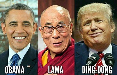 Image result for obama lama ding dong
