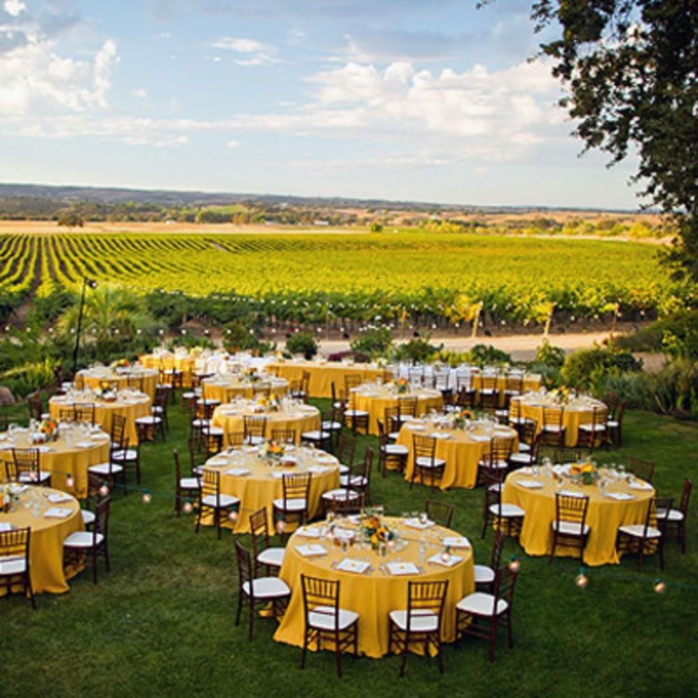 15 Cheap Wedding Ideas on a Budget Vineyard wedding