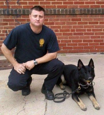 OFFICIAL DEA \ ATF Federally Licensed Police K9 Training Center - k9 officer sample resume