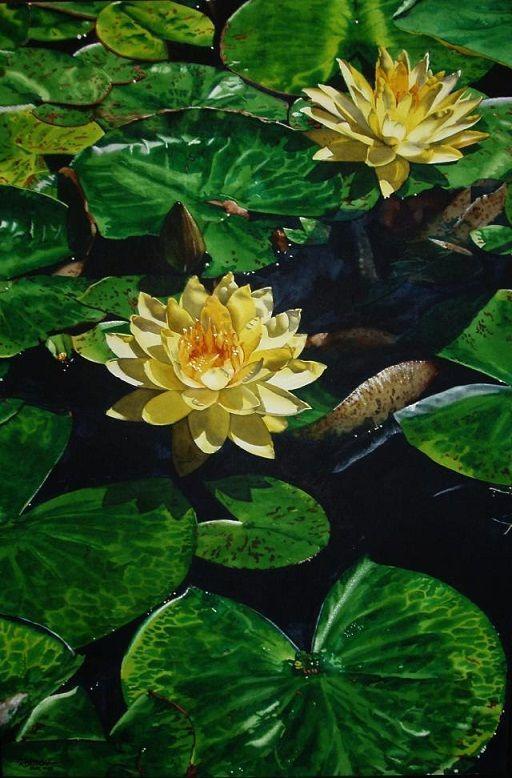 20 Beautiful Flower Watercolor Paintings by Marlin Rotach. Read full article: http://myartmagazine.com/flower-watercolor-paintings-marlin-rotach   more http://myartmagazine.com/kansas-artists   Follow us www.pinterest.com/myArtMagazine