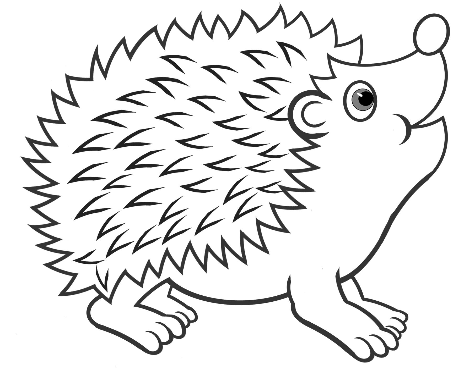 Igel Zeichnung Png 1770 1413 Igel Zum Ausmalen Igel Ausmalbild Igel Vorlage