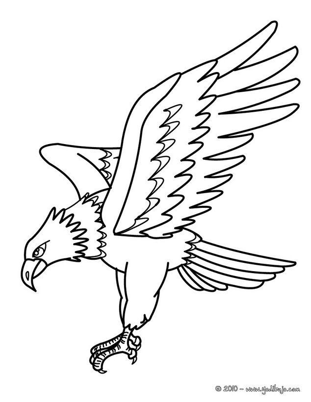 Dibujos De Aguilas Para Imprimir | Dibujos AVES para colorear ...