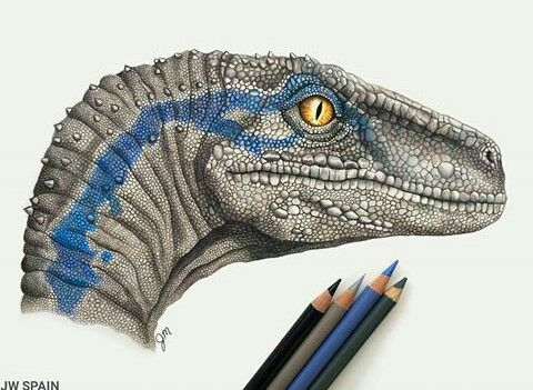 BLUE THE INTELLEGENT COMPASSIONATE VELOCIRAPTOR #prehistoriccreatures