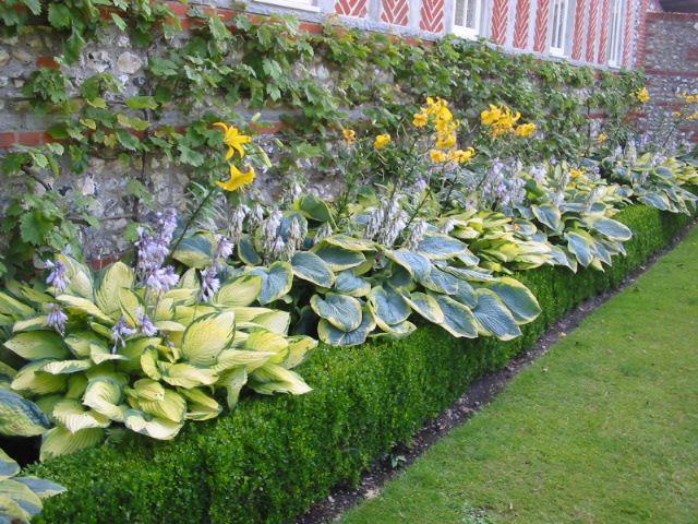 Gärten In England West Dean England Gartenreise Garden England