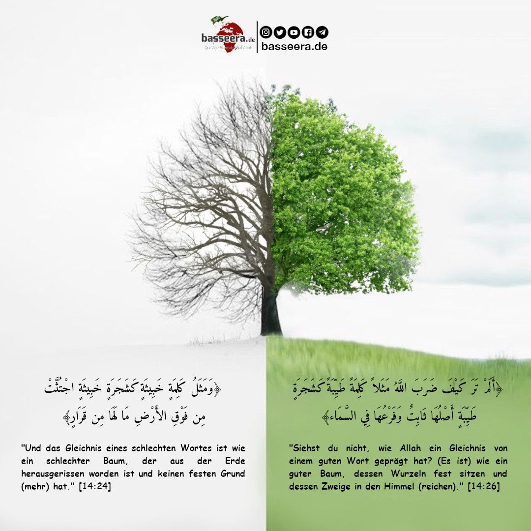 Gutes Und Schlechtes Wort Schiiten Sunniten Gleichnis