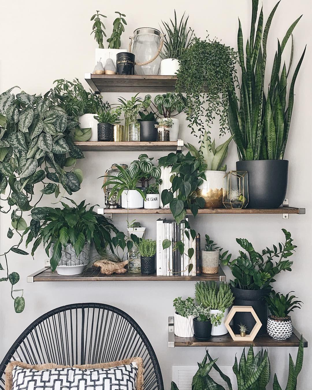 That's a beautiful indoor jungle! #houseplants | Boho master bedroom,  Simple apartment decor, Plant decor