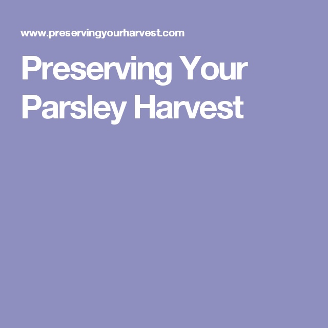 Preserving Your Parsley Harvest
