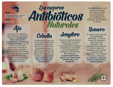 Alivia Tus Dolencias Con Antibióticos Naturales Salud Antibióticos Naturales Nutrición Remedios Naturales