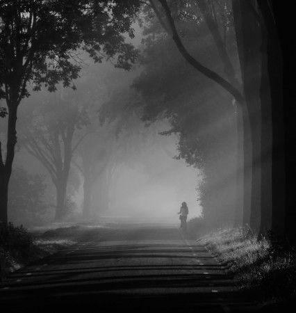 shades of grey by Annemieke Stuij