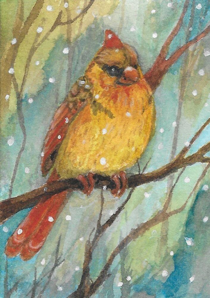ACEO bird cardinal Winter Beauty forest snow nature