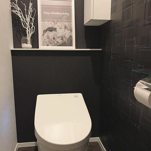 おしゃれなトイレは壁紙が秘訣 テイスト別 おすすめの色 デザイン
