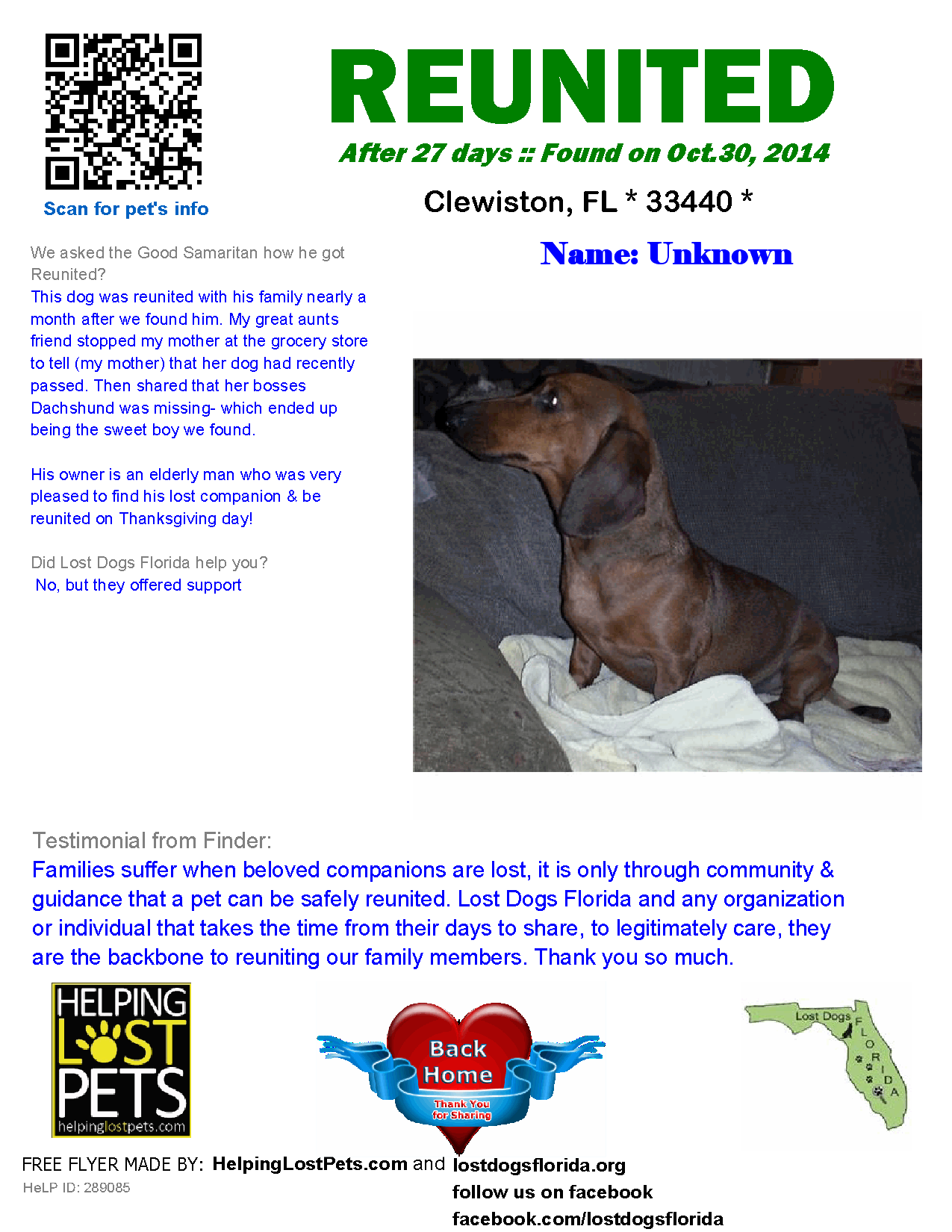 Helping Lost Pets Dog Dachshund Reunited Losing A Pet Dogs Dachshund