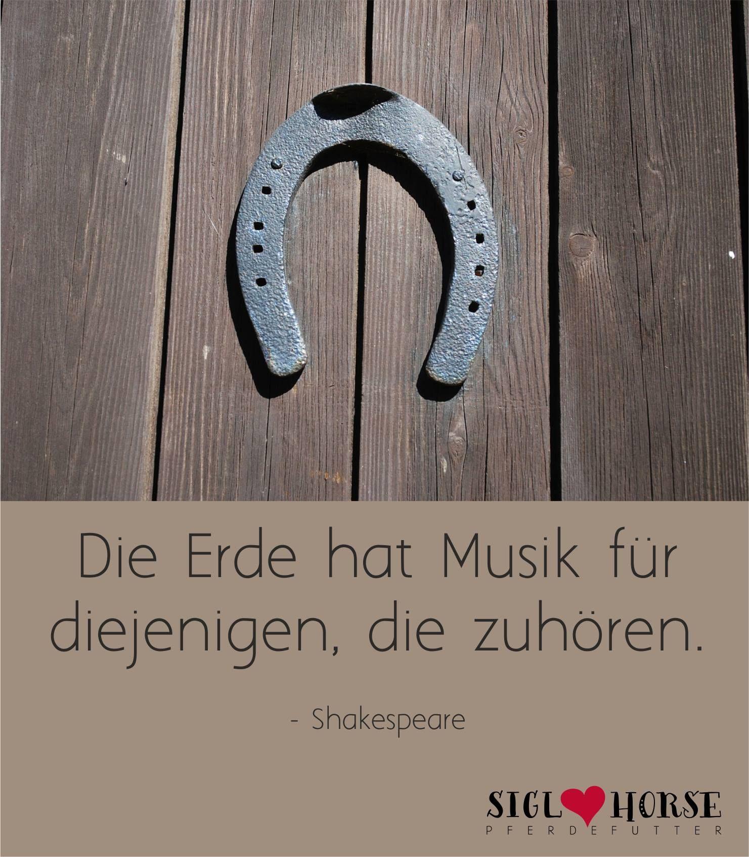 Hufgetrappel ist die schönste Musik.  #Pferd #reiten