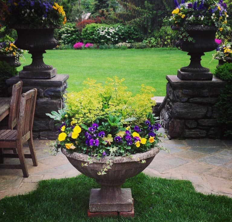 Container Gardening, Fall