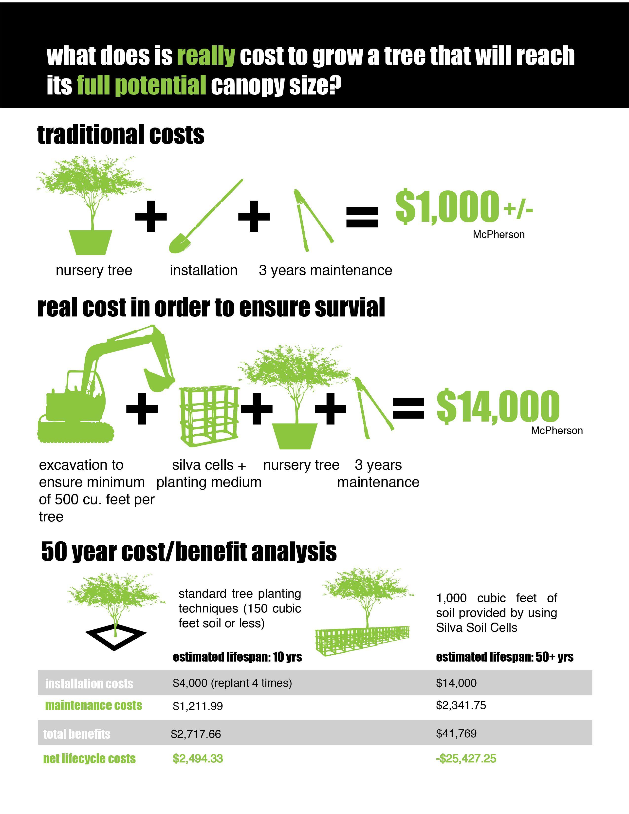 Tree Cost Benefit Analysis  Student Award  Green Street Tree
