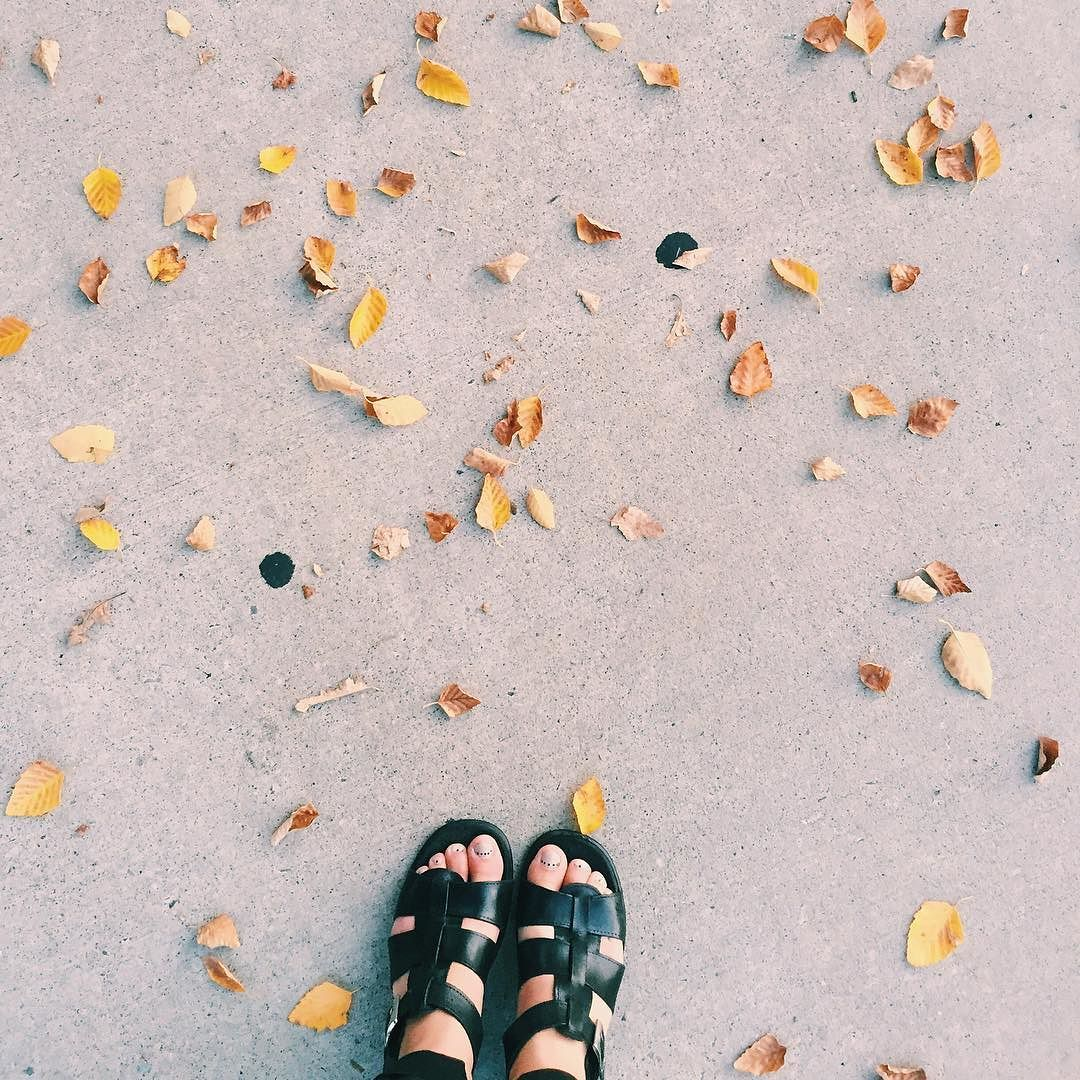 Alright Fall I see you.