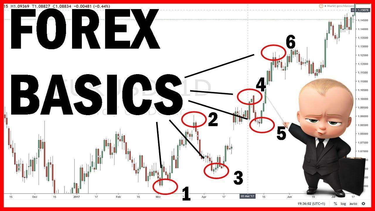 forex trading basics anfänger verluste bei binäre optionen online trading ratgeber