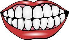 Pin De Maria Laura En álbumes Cuidado Dental Salud Bucal Habitos De Higiene