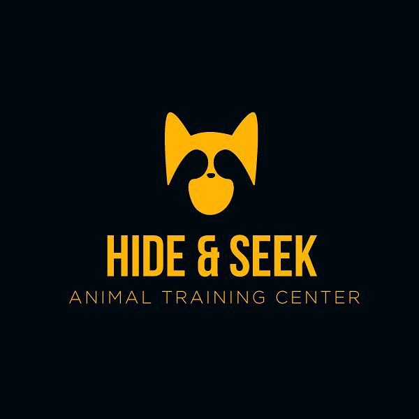 Hide Seek Is An Animal Day Care Training Center They