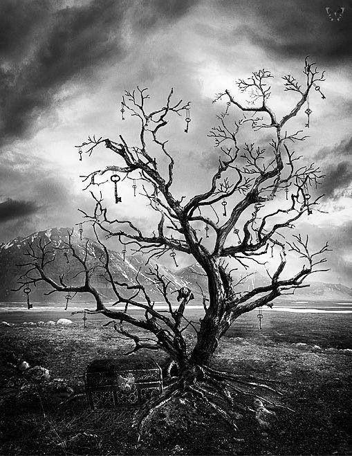 Resultado de imagem para árvore escuro gótico