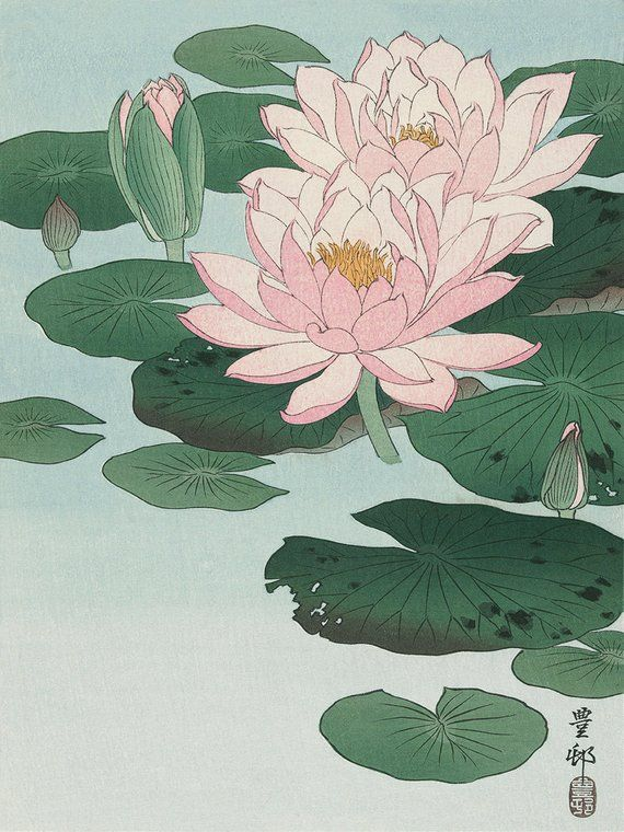 Photo of Water lily flower art print poster antique prints Botanical Art Prints Home Decor Wall flower art print Japanese flowers botanical print