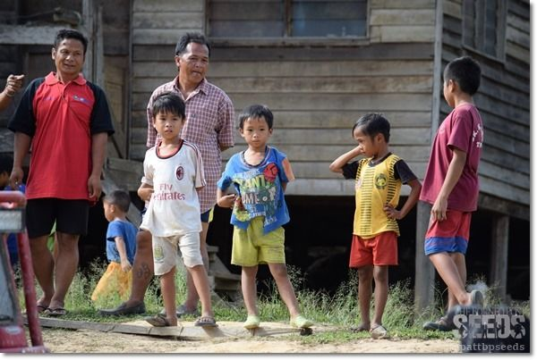 By Patricia Hului patriciahului@theborneopost.com @pattbpseeds     During the recently ended Borneo Safari 2015, I spent three days calling Kampung Kolorok home. The houses which are most...