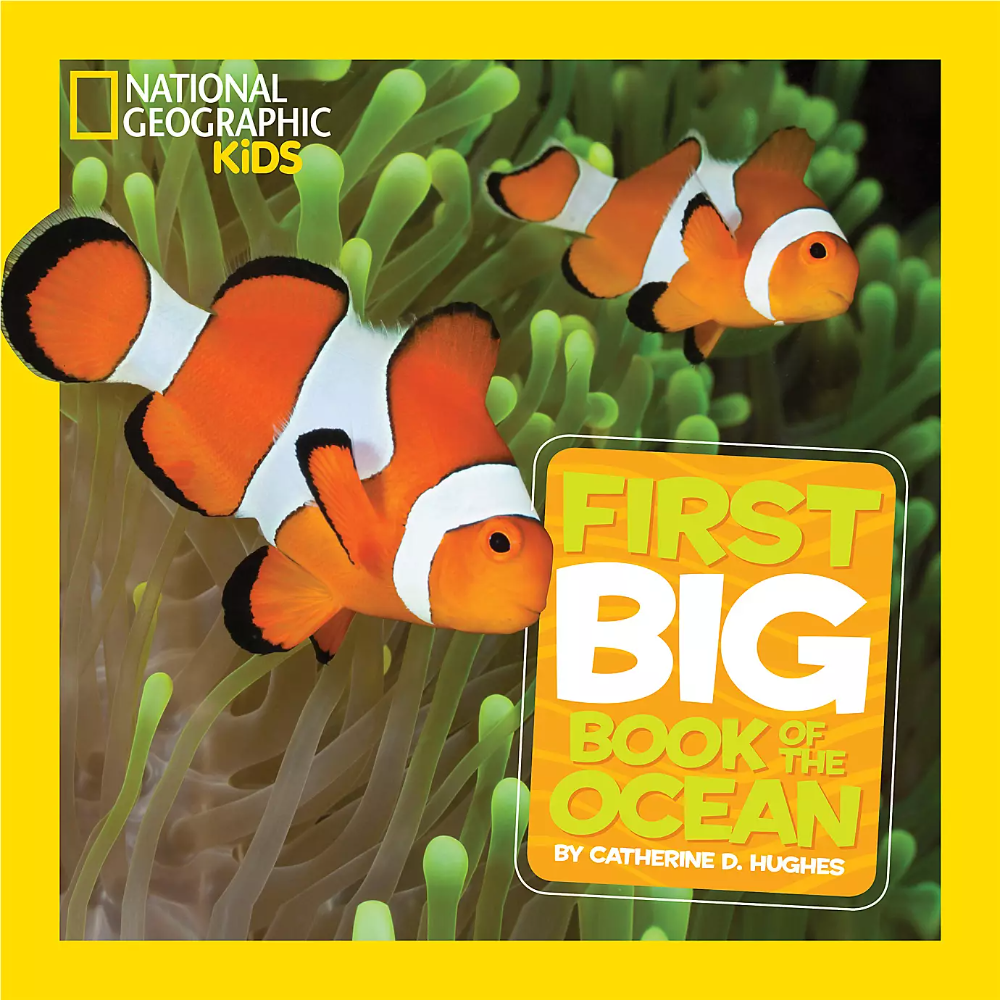 National Geographic Little Kids First Big Book Of The Ocean Shopdisney Big Book National Geographic Kids National Geographic