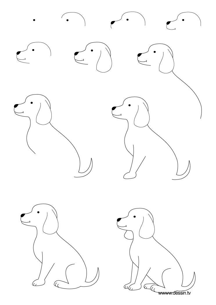 Easy Drawing Dogs Step By Step Kids Drawing Coloring Page Things