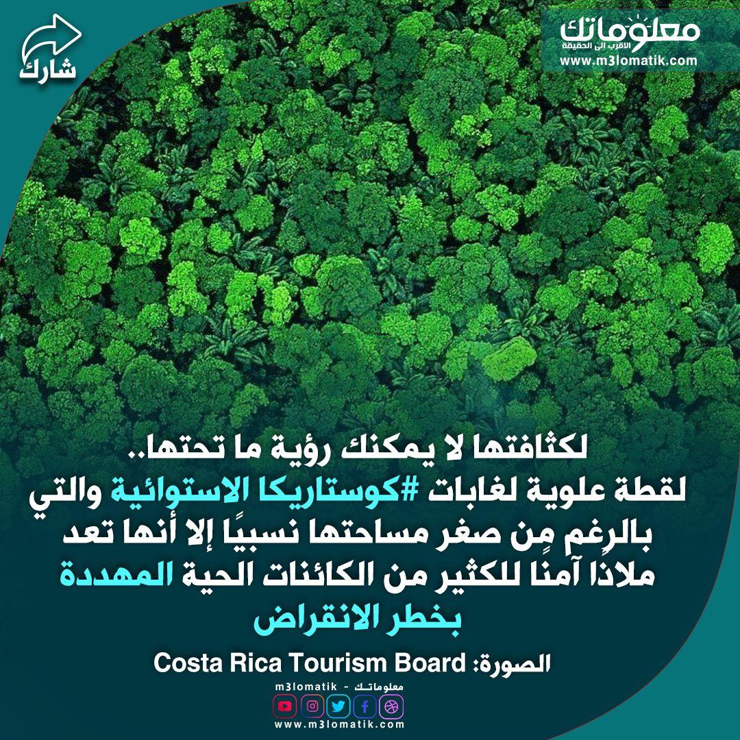 الاشجار الكثيفة Costa Rica Tourism Tourism Costa
