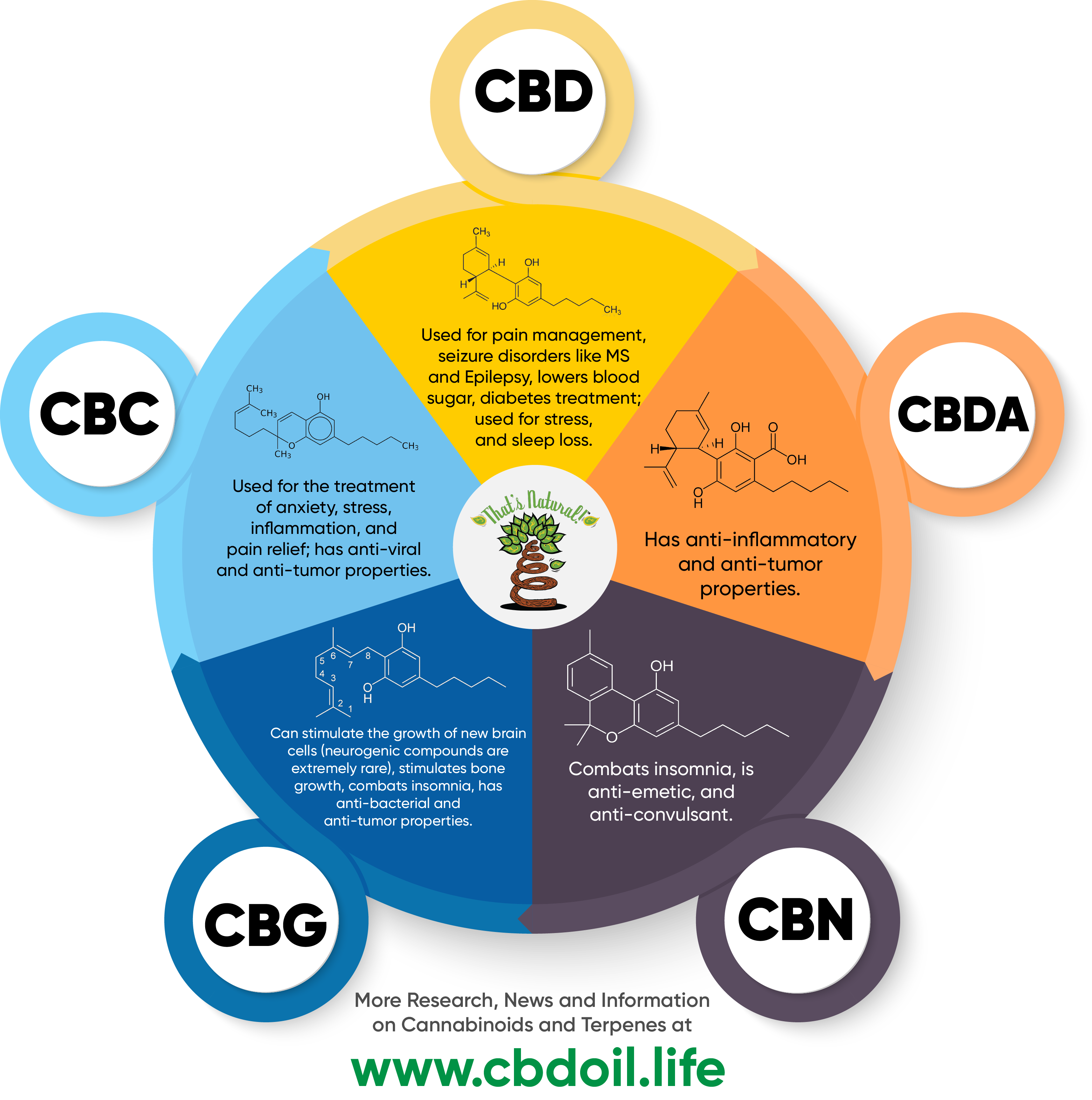 cbd oil cancer how to choose