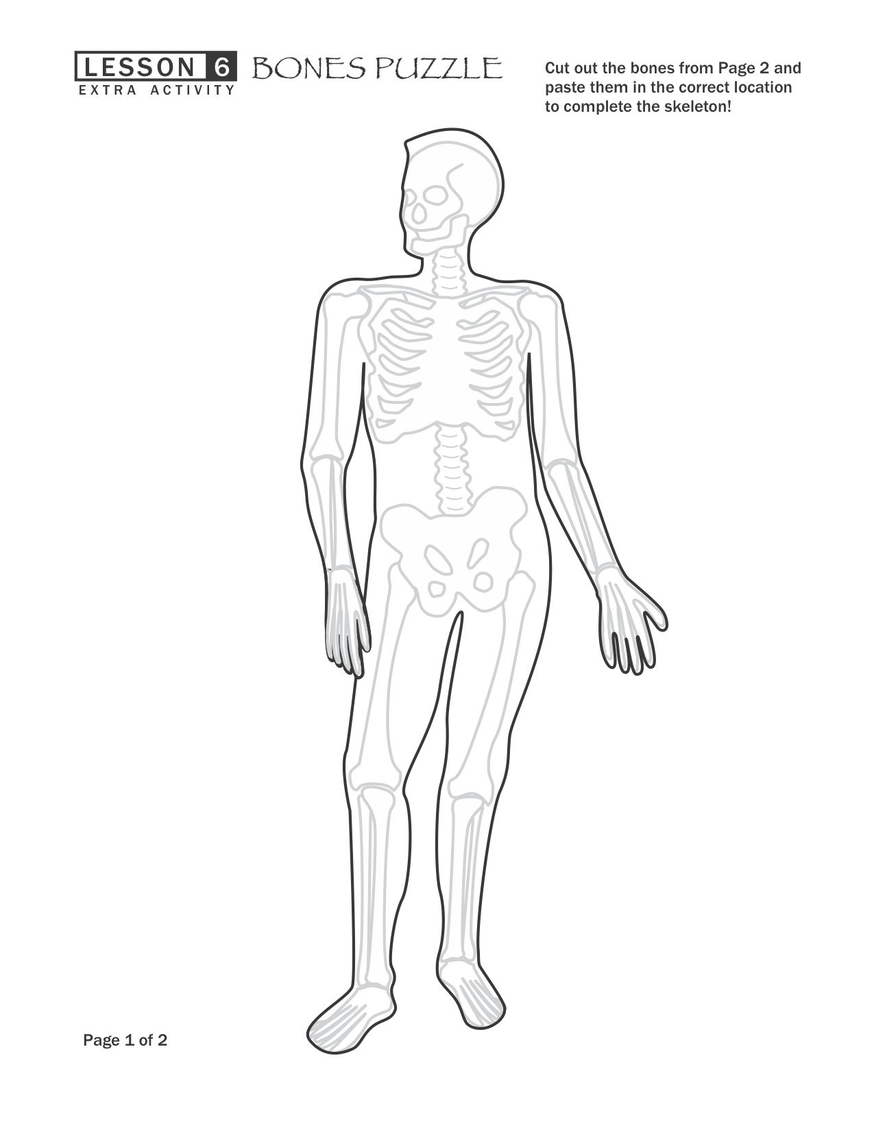 Free Bones Skeletal System Puzzle Worksheet