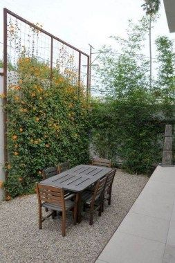 30+ Inexpensive Privacy Fence Design Ideas