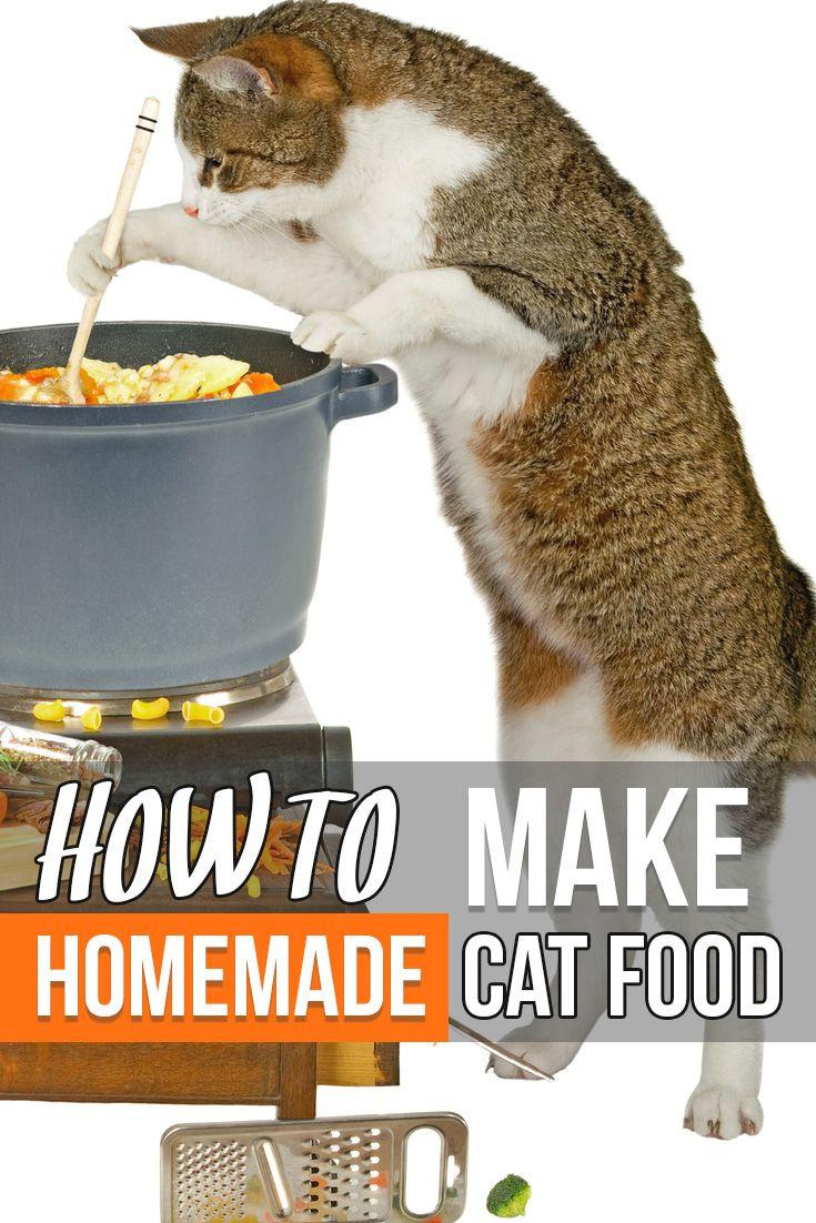 Felineliving Net Recipe Homemade Cat Food Healthy Cat Food Cat Nutrition
