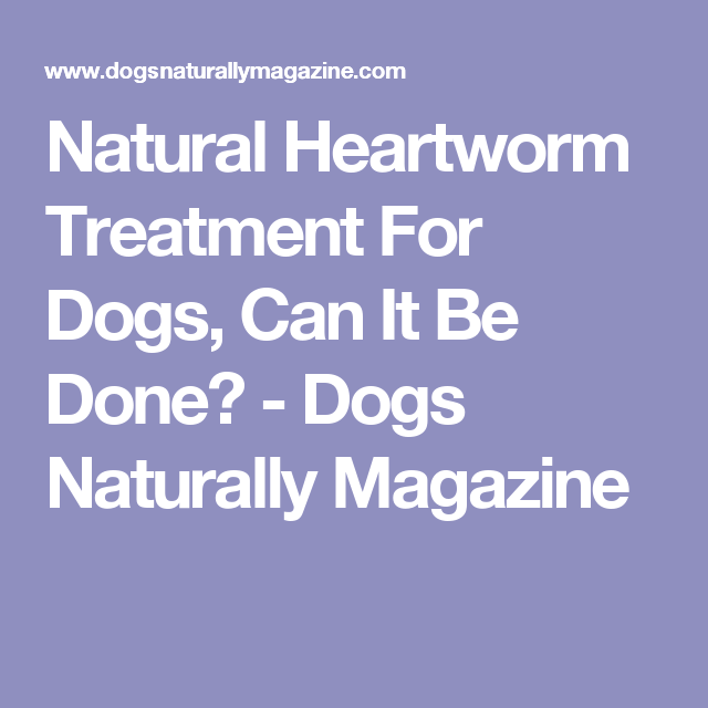 natural heartworm treatment. Natural Heartworm Treatment For Dogs, Can It Be Done? - Dogs Naturally Magazine J