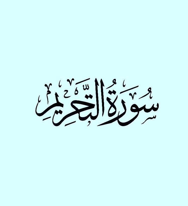 سورة التحريم وديع اليمني Youtube Recital Quran