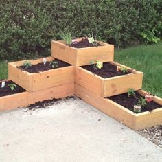 Beau My Patio Garden Boxes. I Have Two Of These. I Grow Small Vegetables And  Fresh Herbs!