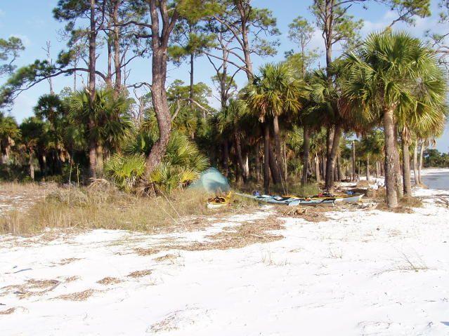 St. Joseph Peninsula State Park, FL | Natural Beauty    East | Pinterest | St  Joseph, Saints And Park