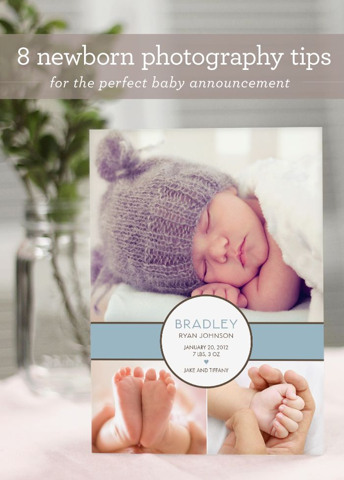 8 newborn photography tips for the perfect baby announcement